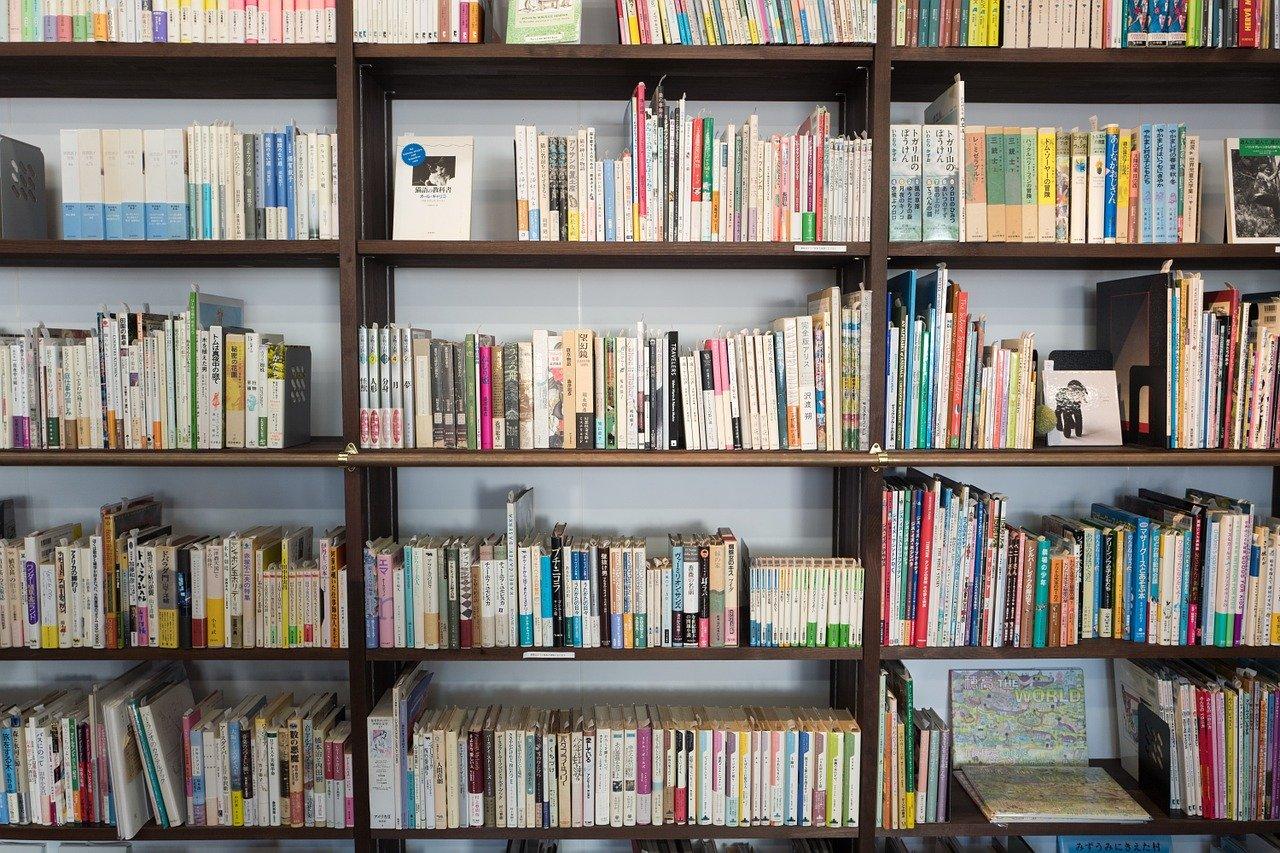 Quelques conseils pour choisir sa bibliothèque